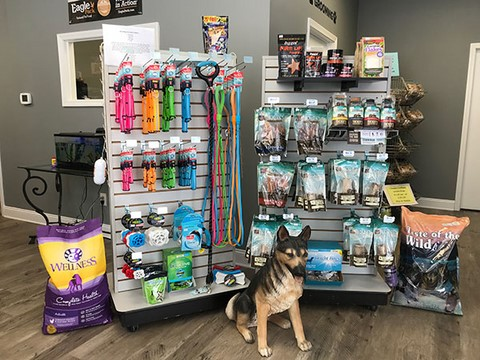 Dog day care dog boarding ace absolute canine experience dog treats and supplies solutioingenieria Image collections